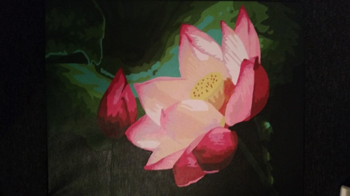 Paint by Numbers - Pink Blossom by Lynda