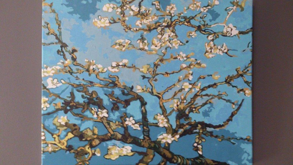 Blossom Almond Tree by Amanda