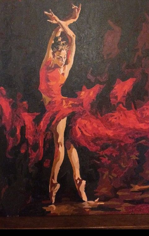 Paint by numbers - Firery Ballet by David P