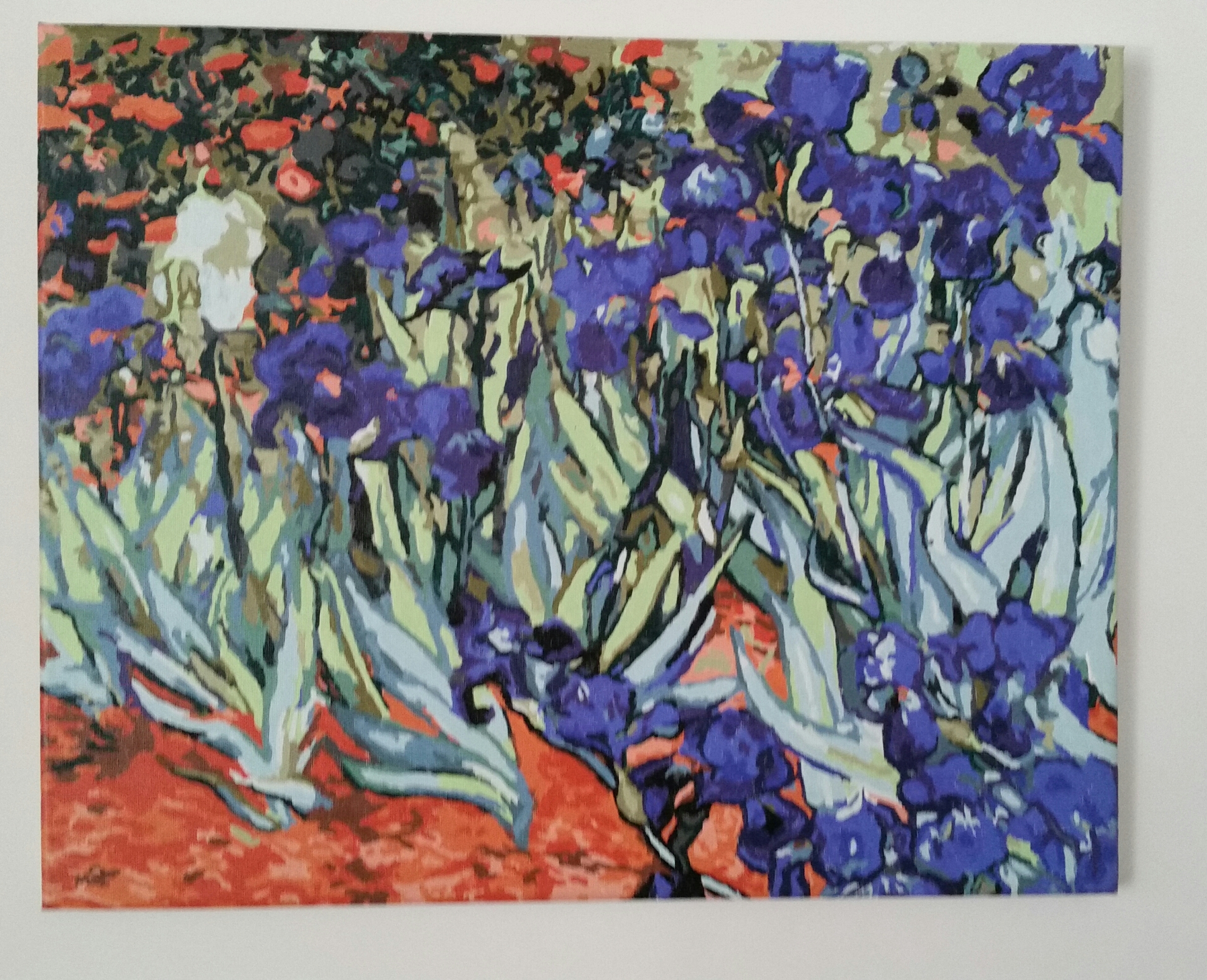 Irises by Lynda