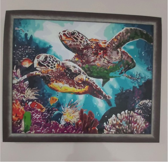 Paint by Numbers - Long Life Turtle by David McR