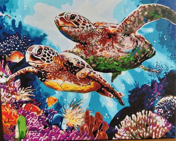 Long Life Turtles by Joan M