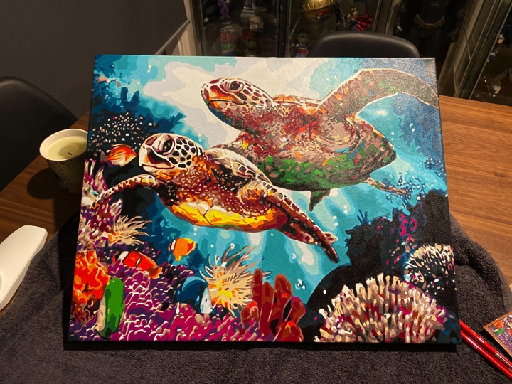 Paint by Numbers - Long Life Turtles by Tracey S