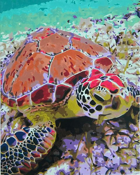 Paint by Numbers - Majestic Turtle by Penny A