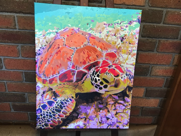Paint by Numbers - Majestic Turtle by Sandra J