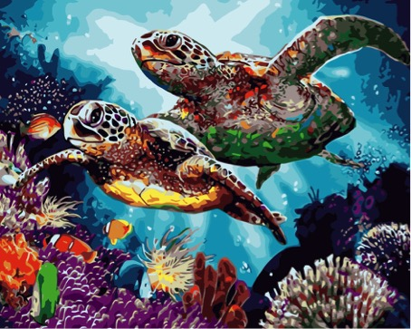 Paint by Numbers Kit - Long Life Turtles