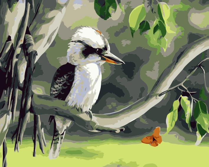 Paint by Numbers - Aussie Kookaburra