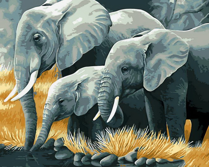 Paint by Numbers Kit - Elephants Family