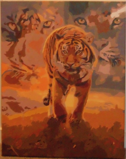 Tiger by Maryanne R