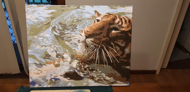 Tiger Swim by Christine O