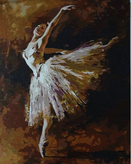Paint by Numbers - White Ballet by Michelle I