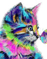 Colourful Kitten and Butterfly