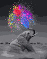 Colourful Sprinkler