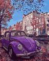 Beetle in Europe Paint by Numbers