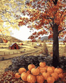 Pumpkins Paint by Numbers