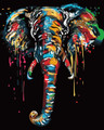 Colourful Elephant Trunk