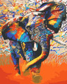 Colourful Elephant 2