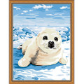 White Sea Lion DIY Painting kit