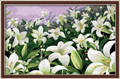White Lilies 50x80cm painting by numbers