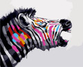 Colourful Zebra