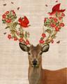 Good news deer