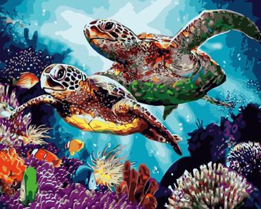 Long Life Turtles