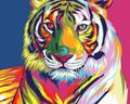 Colourful Tigress