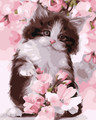 Cat and Blossom