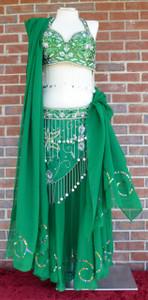 Gorgeous Glitzy Green Ensemble Bra/Belt/Skirt/Veil