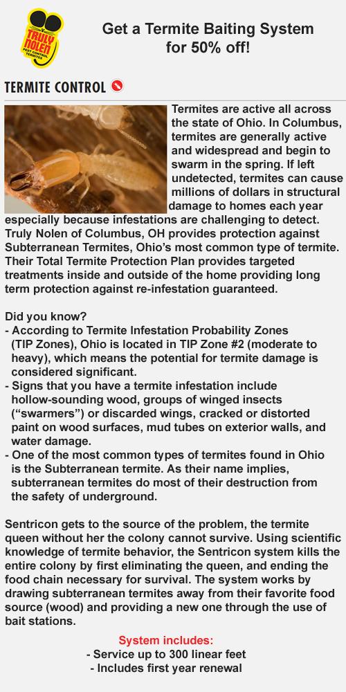 termite-page.jpg