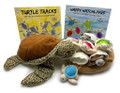 Turtle overload with this cute family package!