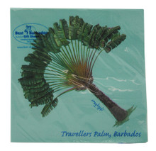 Lunch size paper napkin with a Travellers Palm by Holly Trew.