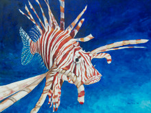 An oil painting of a lionfish by Holly Trew