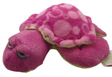 Front view of Sweet and Sassy turtle.