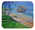 A souvenir mousepad with a painting of teh famouse rocks at Bathsheba in Barbados by Sue Trew