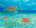 Turtle with Sea Stars by Sue Trew