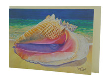 A beautiful queen conch card by Sue Trew.