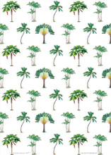 Our Barbados gift wrap paper with make gift giving fun!