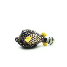 Dot the boxfish from the side.