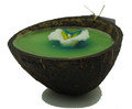 Coconut Flower Candle Half Green centre, White flower
