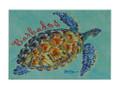 Magnet Turtle