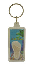 A keychain with a n image of a reef with a turtle in Barbados and some Barbados sand.
