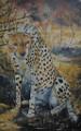 Cheetah by Holly Trew