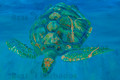 Green Turtle Advancing by Sue Trew