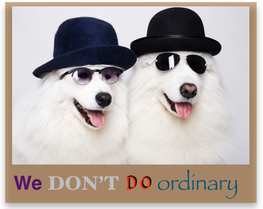 the-old-glasses-shop-we-don-t-do-ordinary.png
