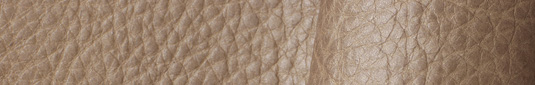 Champagne colored buffalo leather hides and sides