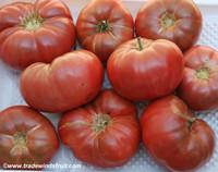 Chinese Purple Tomato