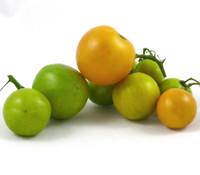 Egg Yolk Tomato