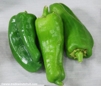 Emerald Giant Pepper