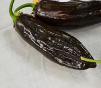 Aji Panca Pepper